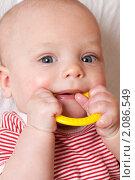 Купить «Ребенок, грызущий пластиковое кольцо», фото № 2086549, снято 25 августа 2019 г. (c) Буханцов Алексей / Фотобанк Лори