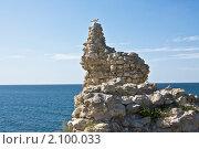 Купить «Чайка на камне, руины Херсонеса, Крым», фото № 2100033, снято 23 июля 2010 г. (c) ИВА Афонская / Фотобанк Лори