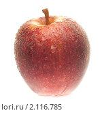 Купить «Свежее сочное красное яблоко с каплями воды на белом фоне», фото № 2116785, снято 10 июля 2010 г. (c) Бурков Андрей / Фотобанк Лори