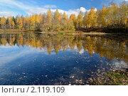 Золотое отражение. Стоковое фото, фотограф Николай Решетников / Фотобанк Лори