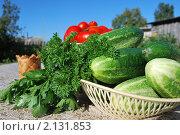 Овощи и зелень для салата на столе. Стоковое фото, фотограф Ванеева Валентина / Фотобанк Лори