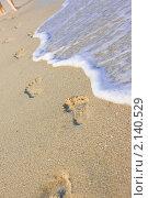 Купить «Следы на песчаном пляже», фото № 2140529, снято 25 августа 2009 г. (c) Podvysotskiy Roman / Фотобанк Лори