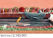 Купить «Вечный огонь», эксклюзивное фото № 2143001, снято 27 февраля 2010 г. (c) Юрий Морозов / Фотобанк Лори