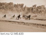 Скачки конные. Стоковое фото, фотограф Евгений Безгодов / Фотобанк Лори