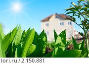 Купить «Загородный дом на фоне сочной зелени и яркого голубого неба», фото № 2150881, снято 11 мая 2010 г. (c) Олег Кириллов / Фотобанк Лори