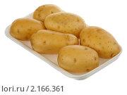 Купить «Картофель», фото № 2166361, снято 25 ноября 2010 г. (c) Игорь Веснинов / Фотобанк Лори