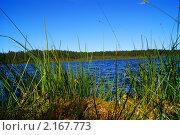 Озеро. Стоковое фото, фотограф Олеся Малиновская / Фотобанк Лори