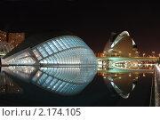 Купить «Валенсия. Город искусства и науки ночью. Полусфера и Дворец искусств», фото № 2174105, снято 6 ноября 2010 г. (c) Maria Kuryleva / Фотобанк Лори