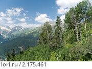Купить «В горах Северного Кавказа. Россия», фото № 2175461, снято 5 августа 2010 г. (c) Pukhov K / Фотобанк Лори