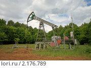 Купить «Нефтекачалка», фото № 2176789, снято 19 июня 2010 г. (c) Дмитрий Жуков / Фотобанк Лори