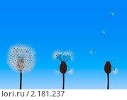 Одуванчики на голубом фоне. Стоковая иллюстрация, иллюстратор Анастасия Машкова / Фотобанк Лори