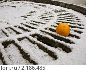 Апельсин на снегу. Стоковое фото, фотограф Владимир Трушин / Фотобанк Лори