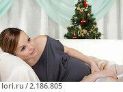 Беременная девушка лежит на диване рядом с новогодней елкой. Стоковое фото, фотограф Андрей Липко / Фотобанк Лори