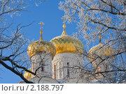 Купить «Православный Свято-Троицкий Ипатьевский мужской монастырь в Костроме, Троицкий собор», фото № 2188797, снято 16 февраля 2010 г. (c) ElenArt / Фотобанк Лори