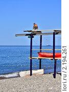 Купить «Спасатель на черноморском пляже», фото № 2194261, снято 12 сентября 2010 г. (c) Владимир Сергеев / Фотобанк Лори