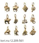 Купить «Коллекция золотых подвесок - 12 знаков зодиака», фото № 2209561, снято 4 декабря 2009 г. (c) ElenArt / Фотобанк Лори