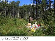 Купить «Свалка в лесу», фото № 2218553, снято 10 августа 2009 г. (c) Сергей Яковлев / Фотобанк Лори