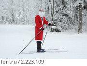 Купить «Дед Мороз с лыжами в зимнем лесу», фото № 2223109, снято 17 декабря 2010 г. (c) Сергей Цепек / Фотобанк Лори