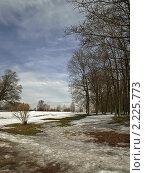Купить «Весенний пейзаж. Первые проталины», фото № 2225773, снято 27 марта 2010 г. (c) Самойлова Екатерина / Фотобанк Лори