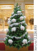 Купить «Рождественская ель», эксклюзивное фото № 2226893, снято 17 декабря 2010 г. (c) Валерия Попова / Фотобанк Лори