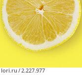 Купить «Лимон», фото № 2227977, снято 4 декабря 2010 г. (c) Андрей Рыбачук / Фотобанк Лори