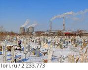 Купить «ТЭЦ за кладбищем», фото № 2233773, снято 16 марта 2010 г. (c) макаров виктор / Фотобанк Лори