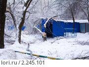 Последствия ледяного шторма в Москве. 26 декабря 2010 года. Стоковое фото, фотограф Сергей Лаврентьев / Фотобанк Лори
