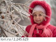 Купить «Девочка зимой», фото № 2245629, снято 26 декабря 2010 г. (c) Лена Лазарева / Фотобанк Лори