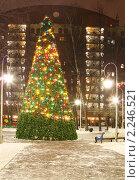 Купить «Новогодняя елка в маленьком сквере», фото № 2246521, снято 17 декабря 2010 г. (c) Наталия Шевченко / Фотобанк Лори