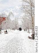 Купить «После ледяного дождя. Городской пейзаж», фото № 2248633, снято 26 декабря 2010 г. (c) Parmenov Pavel / Фотобанк Лори