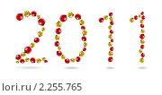 Купить «Надпись 2011 из божьих коровок», иллюстрация № 2255765 (c) Elisanth / Фотобанк Лори