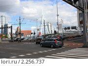 Мост Эрасмус (2010 год). Редакционное фото, фотограф Петрова Надежда / Фотобанк Лори