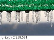 Купить «Сосульки», фото № 2258581, снято 26 декабря 2010 г. (c) Евгений Дробжев / Фотобанк Лори
