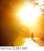 Купить «Влюбленная пара», фото № 2261541, снято 3 ноября 2008 г. (c) Алена Роот / Фотобанк Лори