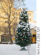Купить «Новогодняя елка в московском дворике», эксклюзивное фото № 2262121, снято 6 января 2011 г. (c) Валерия Попова / Фотобанк Лори