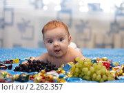 Купить «Вкусная радость», фото № 2262357, снято 17 октября 2010 г. (c) Иванюшин Виталий / Фотобанк Лори