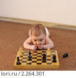 Купить «Ребенок решает шахматную задачу», фото № 2264301, снято 20 ноября 2018 г. (c) Иванюшин Виталий / Фотобанк Лори