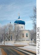 Купить «Плавск. Церковь Сергия Радонежского», фото № 2264385, снято 4 января 2011 г. (c) Alexander Mirt / Фотобанк Лори