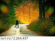 Купить «Влюбленная пара», фото № 2264437, снято 3 ноября 2008 г. (c) Алена Роот / Фотобанк Лори