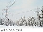 Купить «Заснеженные линии электропередачи», фото № 2267013, снято 6 января 2011 г. (c) Кекяляйнен Андрей / Фотобанк Лори
