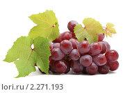 Купить «Виноград», фото № 2271193, снято 14 июля 2010 г. (c) Paleka / Фотобанк Лори