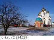 Купить «Собор Рождества Христова», фото № 2284289, снято 18 января 2011 г. (c) Иван Федоренко / Фотобанк Лори