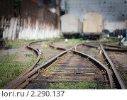 Путь в никуда. Стоковое фото, фотограф Galina Zakovorotnaya / Фотобанк Лори