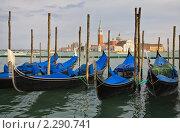 Купить «Гондолы - символ Венеции», фото № 2290741, снято 16 апреля 2010 г. (c) Виктория Катьянова / Фотобанк Лори
