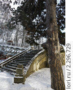 Лестница на мостик. Стоковое фото, фотограф Петрий Любовь Игоревна / Фотобанк Лори