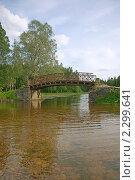 Купить «В Гатчинском парке», эксклюзивное фото № 2299641, снято 19 июня 2010 г. (c) Самохвалов Артем / Фотобанк Лори
