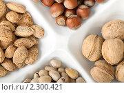 Четыре вида популярных орехов лежат раздельно на белой тарелке. Стоковое фото, фотограф Андрей Алпатов / Фотобанк Лори