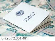 Купить «Трудовая книжка на фоне денег», фото № 2301481, снято 26 января 2011 г. (c) Александр Фисенко / Фотобанк Лори
