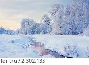 Купить «Зимний пейзаж», фото № 2302133, снято 6 декабря 2010 г. (c) Майя Крученкова / Фотобанк Лори