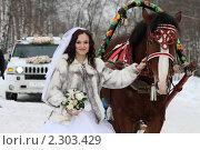 Купить «Невеста», эксклюзивное фото № 2303429, снято 15 января 2011 г. (c) Дмитрий Неумоин / Фотобанк Лори
